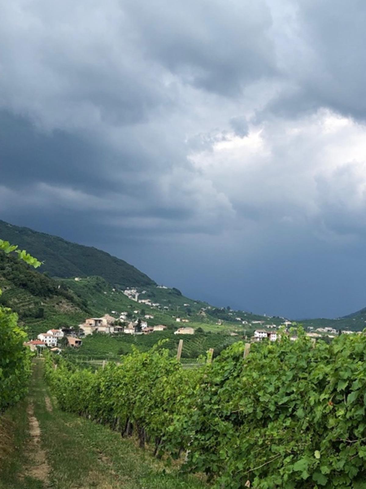 Valdobiaddene. Photo by Vinotalia
