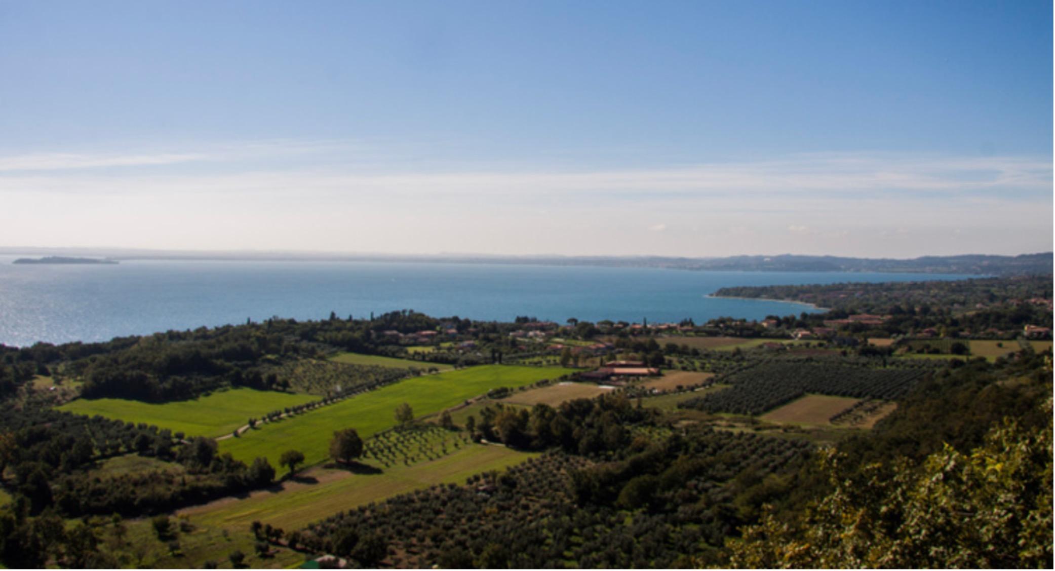 Valtenesi vineyards on Lago di Garda. Photo by Italian Wine Central