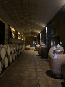 g 225x300 - 6 Reasons to Book a Private Wine Tour with Vinotalia
