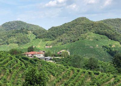 mountain-view-2